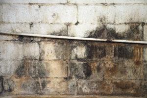 Commercial property renovation Mahogany, Inc.